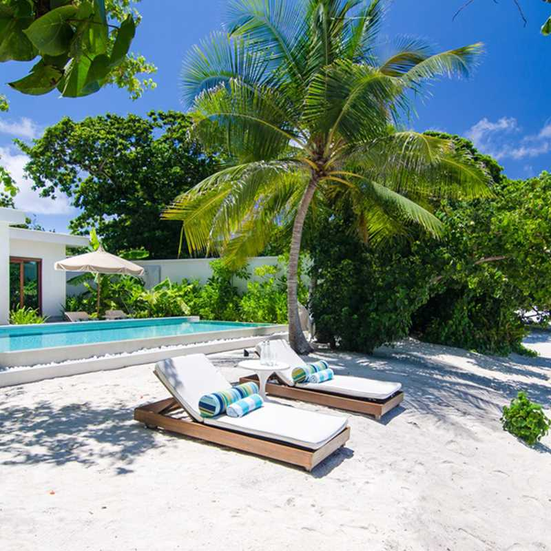 Sun beds in the beach by the pool