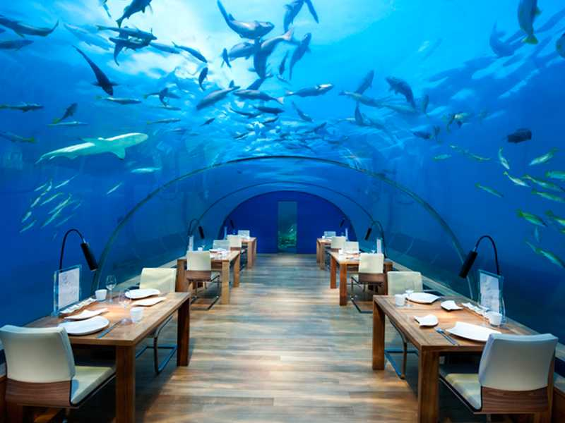 Ithaa Undersea Restaurant gallery images
