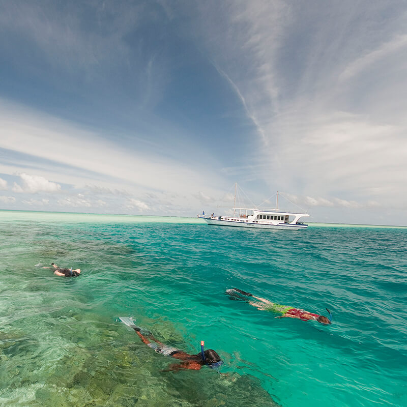 View more details about snorkelling holiday package at vacations maldives