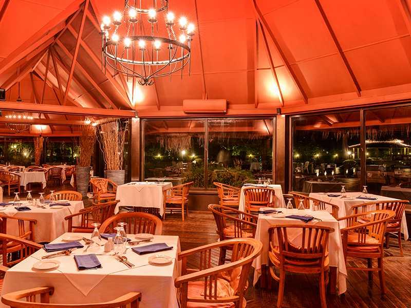 Main Restaurant (Banyan Restaurant)  gallery images