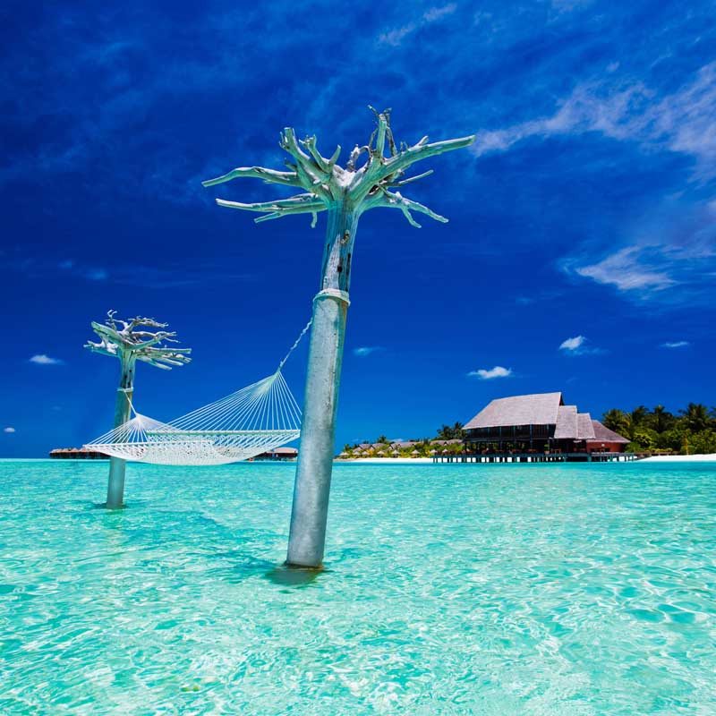 Over water hammock with amazing views of the shallow sea
