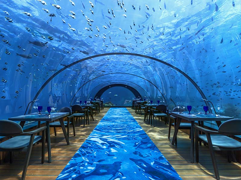 Seasoned With Awe: 5.8 Undersea Restaurant gallery images